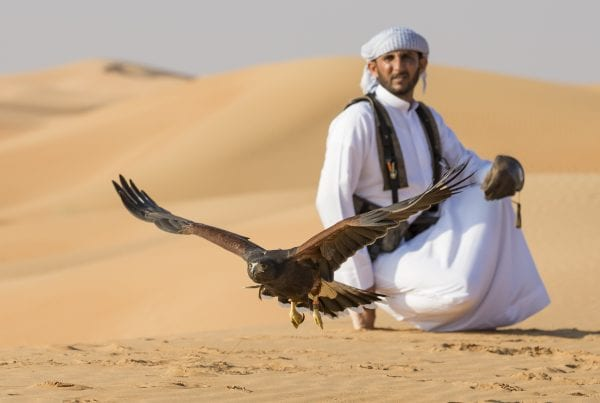 Travel Blogger Jennifer Eremeeva explores the ancient art of falconry.